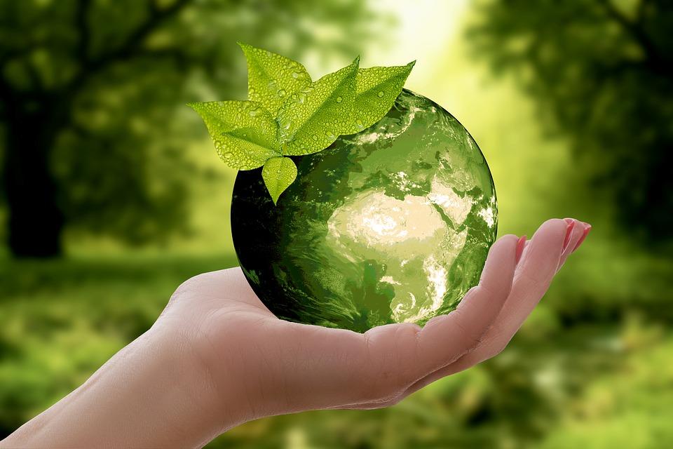 Les écologistes