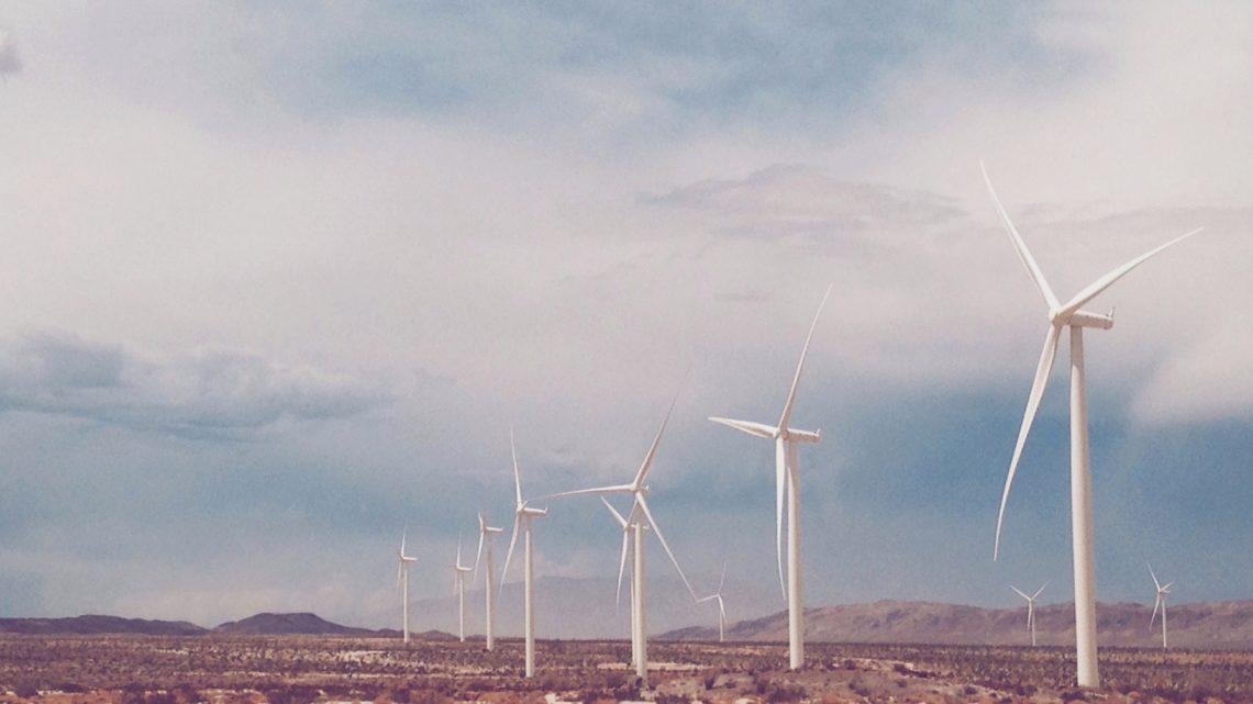 Que faire pour adopter une démarche écologique ?