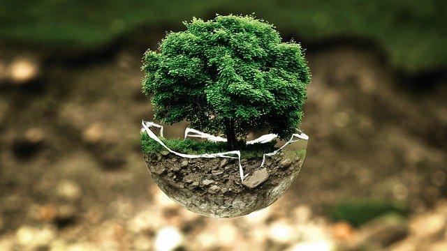 Les gestes écologiques pour protéger l'environnement